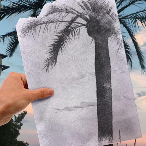 Palme Zeichnung